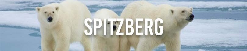 destination-croisiere-spitzberg
